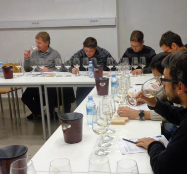 Meeting and presentation of sensorial analysis of the wines micro-vinified in the year 2013.